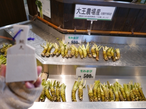 fresh wasabi for sale